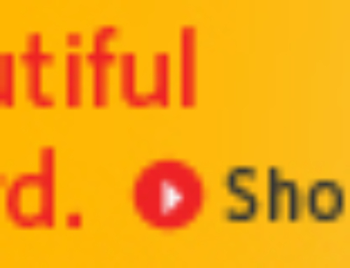 Banner Ad for Kodak Gallery